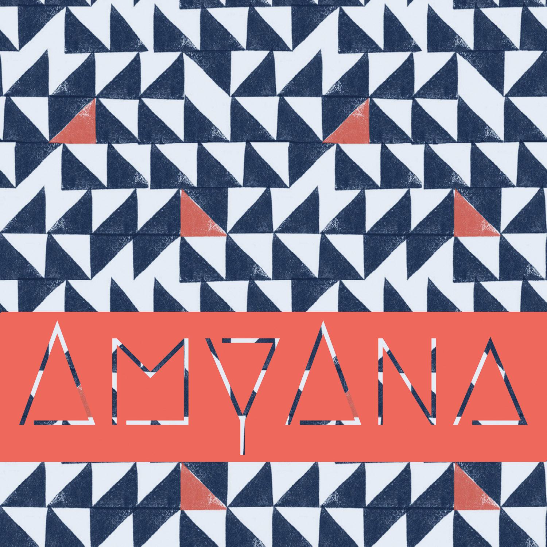 AmyAna Cover art